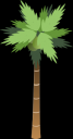 bsantos_palm_tree.png